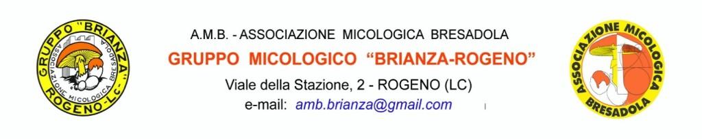 micologico